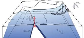 How does a tectonic plate die?