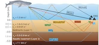 Fin Whale songs illuminate oceanic crustal layers
